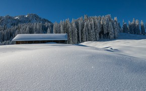 Картинка зима, крыша, поле, лес, небо, свет, снег, дом, сияние, синева, ели, сугробы, амбар, ферма