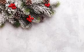 Картинка снег, Новый Год, Рождество, Christmas, wood, snow, New Year, decoration, Happy, Merry, fir tree, ветки …
