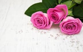 Картинка белый, стол, фон, розы, букет, розовые, pink, бусинки, roses, bouguet, Olena Rudo