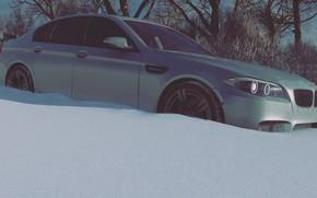 Картинка BMW, Xbox One, 5er, Forza Horizon 4