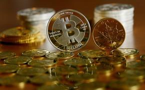 Обои валюта, money, Bitcoin, currency, монета, лого