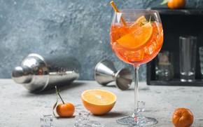 Картинка бокал, апельсин, коктейль, мандарин