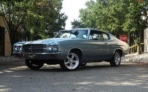 Картинка Chevrolet, Classic, Chevelle, Vehicle, Chevelle SS