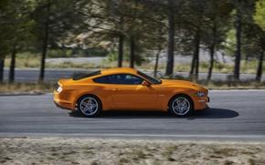 Картинка оранжевый, движение, Ford, профиль, 2018, фастбэк, Mustang GT 5.0
