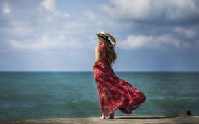 Картинка море, девушка, ветер, спина, платье, Alex Darash