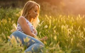 Картинка лето, трава, девушка, поза, настроение, луг, Jack Russell