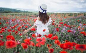 Картинка поле, лето, девушка, поза, волосы, спина, маки, шляпа, Ксения, Sergey Shatskov