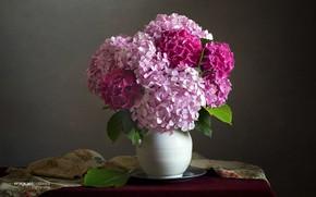 Картинка розовая, букет, ваза, гортензия