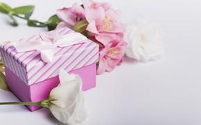 Картинка цветы, подарок, лилии, лента, розовые, white, белые, pink, flowers, romantic, gift, эустома, lily