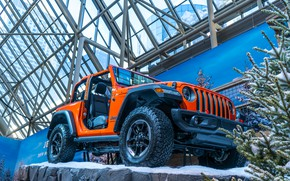 Картинка car, cars, jeep, orange, track, toronto, 2019, Autoshow