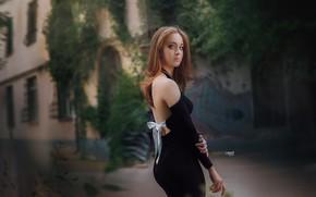 Картинка попа, Девушка, платье, Alexander Drobkov-Light, Виктория Рейн