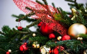 Картинка зима, шарики, ветки, праздник, шары, Рождество, красные, Новый год, хвоя, боке, ёлочные украшения, ёлочные игрушки, …