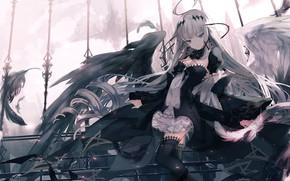 Картинка девушка, крылья, ангел, чёрные крылья