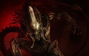 Картинка Чужой, Пасть, Клыки, Морда, Хищник, Fantasy, Арт, Art, Predator, Alien, Фантастика, Horror, Illustration, Xenomorph, Creature, …