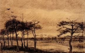 Картинка деревья, птица, Vincent van Gogh, Pine Trees in the Fen