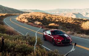 Картинка дорога, машина, горы, природа, стиль, разметка, холмы, фары, Ford, спортивная, спорткар, Ford Mustang Shelby GT500, …