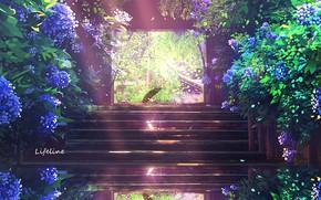 Картинка цветы, природа, зонт, ворота, лестница, by Lifeline