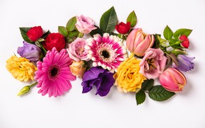 Картинка цветы, colorful, flowers, composition, floral