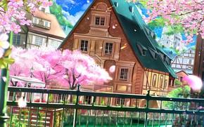 Картинка провода, забор, голубое небо, деревянный дом, цветение весной, весенний ветерок