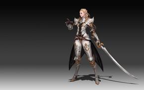 Картинка Girl, Fantasy, Art, Style, Background, Illustration, Weapon, Elf, Minimalism, Sword, Armor, Character, Melee Weapons, Junq …