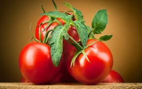 Картинка овощи, томат, помидоры