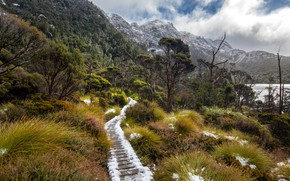 Картинка Australia, Tasmania, Cradle Mountain