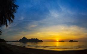 Картинка пальмы, paradise, beach, palms, берег, sunset, море, summer, tropical, лето, пляж, sea, силуэт, seascape, beautiful, …