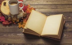 Картинка осень, листья, фон, дерево, кофе, colorful, шарф, чашка, книга, доска, wood, background, autumn, leaves, cup, …