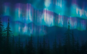 Картинка ночь, северное сияние, ели
