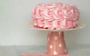 Картинка торт, украшение, cake, крем, десерт, dessert