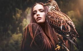 Обои лес, глаза, взгляд, девушка, лицо, ресницы, темный фон, друг, птица, портрет, шатенка, красотка, сокол, друзья, ...