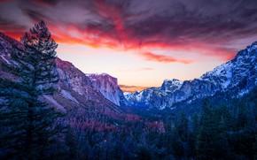 Картинка Nature, Landscape, Mountain, Trees
