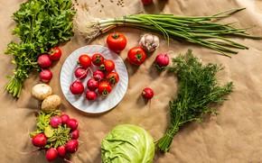 Картинка зелень, лук, укроп, овощи, капуста, петрушка, чеснок, картофель, редис, помидорки