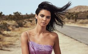 Картинка взгляд, девушка, природа, лицо, модель, волосы, макияж, Elle, Kendall Jenner