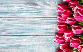 Картинка фон, голубой, тюльпаны, розовые