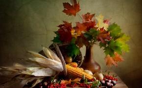 Картинка листья, фото, кукуруза, ваза, натюрморт