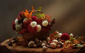 Картинка осень, листья, цветы, ягоды, корзина, грибы, натюрморт, рябина, салфетка, Ковалёва Светлана, Светлана Ковалёва