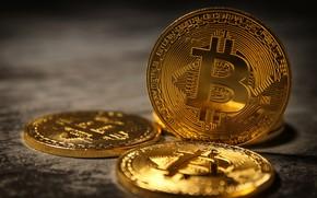 Картинка деньги, монеты, боке, крупным планом, Bitcoin, биткоин
