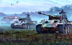 Картинка Трава, Дом, RAF, Panther, Hawker Typhoon, PzKpfw V Panther, Западный фронт, Самолёты, Танкисты