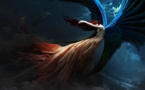 Картинка девушка, облака, Небо, крылья, ангел