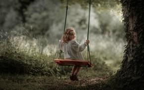 Картинка качели, дерево, девочка
