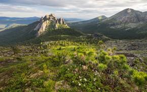 Картинка пейзаж, горы, природа, парк, утро, леса, заповедник, Ергаки, Виктор Зайцев, Западный Саян