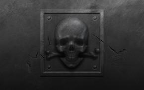 Обои металл, трещины, табличка, череп, пятна, царапины, кость, болты, шероховатость