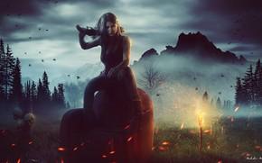 Картинка лес, небо, трава, девушка, облака, деревья, пейзаж, горы, птицы, туман, оружие, скалы, огонь, поляна, кресло, …