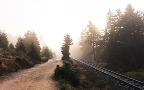 Картинка дорога, природа, туман, железная дорога