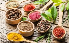 Обои перец, травы, wood, специи, ложки, анис звёздчатый, spices, лавр, куркума