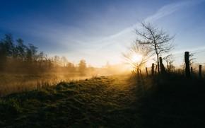 Картинка дорога, забор, утро