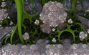 Картинка макро, узор, грибы