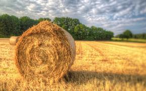 Картинка поле, лето, сено