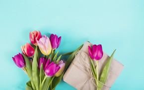 Картинка цветы, colorful, тюльпаны, розовые, pink, flowers, tulips, spring, purple, gift box